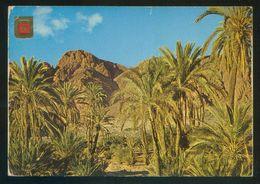 Marruecos. Tafraout. *Valle Del León Que Ríe* Ed. Fisa-Komaroc Nº 7. Circulada 1979. - Marruecos