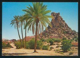 Marruecos. Tafraout. *Vue De La Palmeraie* Ed. Ismail Nº 1301. Circulada 1988. - Marruecos