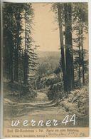 Bad Alt Reichenau V.1906  Der Sattelweg (12600-01) - Schlesien