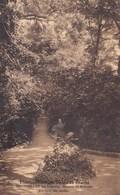 Etablissement Des Soeurs De Charité, Neufvilles Lez Soignies, Maison De Retraite, Un Coin Du Jardin (pk42685) - Soignies