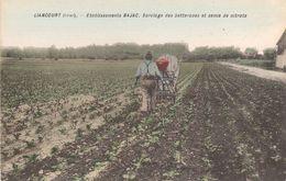 60 - LIANCOURT - Etablissements Bajac - Sarclage Des Betteraves Et Semis De Nitrate - Liancourt