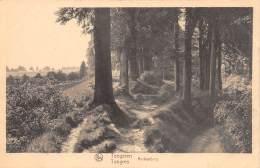 TONGEREN - Beukenberg - Tongeren