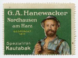 CINDERELLA : GERMANY - G.A. HANEWACKER, NORDHAUSEN AM HARZ - KAUTABAK - Cinderellas