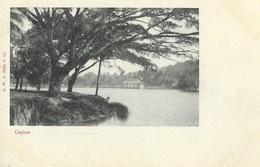 Sri Lanka (Ceylon, Ceylan) - Kandy Lake - Carte Dos Simple A.W.A. Plâté & Co, Non Circulée - Sri Lanka (Ceylon)