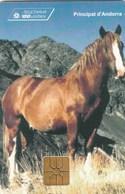 TELECARTE     ANDORRA ...100 UNITATS - Andorra