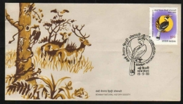 India  1983  Birds  Woodpecker  Bombay Natural History Society  NEW DELHI  FDC  #  06028  D Inde Indien - Songbirds & Tree Dwellers
