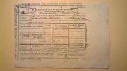 1907 FERROVIE DELLO STATO REGNO RICEVUTA SPEDIZIONE STRADE FERRATE MERIDIONALI GRANDE VELOCITA DESCRIZIONE MERCI - Treni