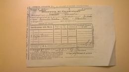 1904 FERROVIE DELLO STATO REGNO RICEVUTA SPEDIZIONE STRADE FERRATE MERIDIONALI GRANDE VELOCITA DESCRIZIONE MERCI - Spoorwegen