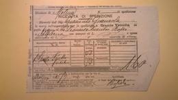 1900 FERROVIE DELLO STATO REGNO RICEVUTA SPEDIZIONE STRADE FERRATE MERIDIONALI GRANDE VELOCITA DESCRIZIONE MERCI - Europa