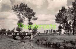 CPSM FOTO PHOTO MEERSEL DREEF DE KEMELSBRUG - Hoogstraten