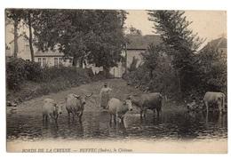 36 INDRE - RUFFEC Le Château, Magnifiques Vaches Longues Cornes - Frankreich