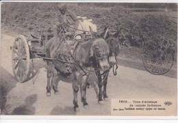 Armée Indienne ,type D'attelage Chevaux ,India Army Type Of Team ,cavalerie 1914 - War 1914-18