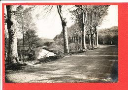 19 BUGEAT Cpsm Route De Pérols      Edit Roucard - Autres Communes