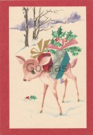Romania - Christmas Card - Illustrateur - Noël