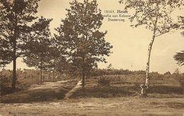KALMTHOUT - Dreefje Aan Kolonie Diesterweg - Man Zittende Tegen Berk - Uitg. Hoelen H 10164 - Rond 1930 - Kalmthout