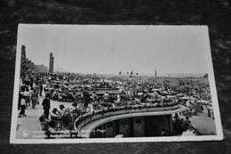 262  Ostende  Oostende  1955 - Oostende