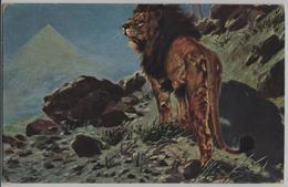 Löwe Lions Leones Lioni - Künstlerkarte Serie 283 - Lions