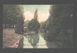 Liège - Un Coin Du Jardin à Acclimatation - 1907 - Colorisée - Liege