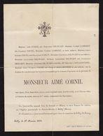 Aimé Cornil Gilly 1884 Famille Delwart Lambert Dailly L'arbalestrier Arbre Généalogique Manuscrit Au Dos - Obituary Notices