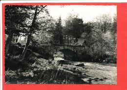 Environs De BUGEAT Cpsm Pont Et Moulin Du Pelaud      Edit Roucard - France