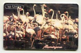 TK 31890 TANZANIA - Chip Flamingoes ...Beware Of Aids - Tanzania