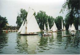 """Photo-carte 1998 """"Les Régates à Carrières-sur-Seine"""" Voilier - Bâteau à Voiles - Reproductions"""