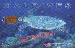 Télécarte MALDIVES * TURTLE  (2230) PHONECARD  *  * TORTUE *  TELEFONKARTE * SCHILDKRÖTE - Turtles