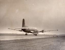 Douglas C-124 Globemaster US Air Force Avion Cargo Aviation Ancienne Photo 1950's - Aviation