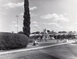 Texas Randolph Air Force Base Militaire Piscine Ancienne Photo 1960's - War, Military