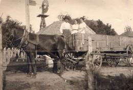 USA Fermier Et Ses Filles? Cheval Et Charette Eolienne Campagne Ancienne Photo 1910's - Photographs