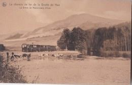 Carte Postale  : Le Chemin De Fer De La Grotte De Han  (Belgique)  La Drève De Marronniers D'>Inde   Nels    Train - Belgio