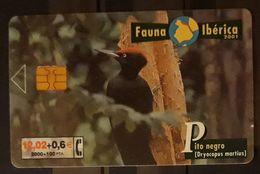 ESPAÑA 2001. FAUNA IBÉRICA - BIRDS - PITO NEGRO. USADO - USED - Otras Colecciones