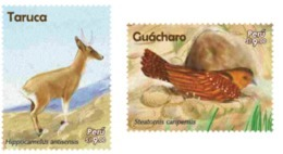 Peru 2018 Fauna Deer And Bird. - Unclassified