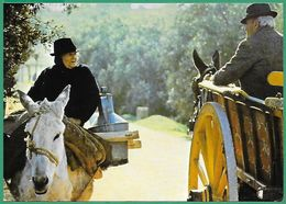 ! - Portugal - Algarve - Personnages De La Région -Vieille Dame Sur Un âne Et Homme Sur Une Charette - Silhouettes