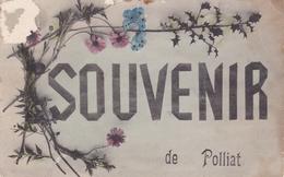 POLLIAT 01 CARTE SOUVENIR BELLE CARTE  RARE !!! - France