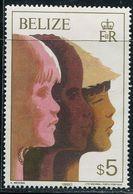 AL0608 Belize 1980 International Year Of The Child High Value 1V MNH - Belize (1973-...)