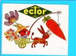 Cp  Carte  Postale  - Ane Graines Eclor - Publicité