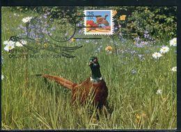 Etats Unis - Carte Maximum 1988 - Oiseaux - Maximumkarten (MC)