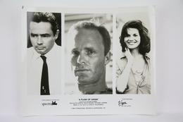 1984 Original Cinema Press Photo -A Flash Of Green -Ed Harris, Blair Brown - Fotos