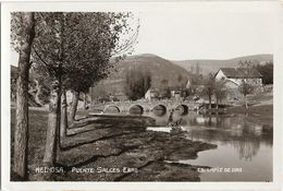 285 - ESPAGNE - REINOSA - Puente Salces Ebro - Cantabria (Santander)