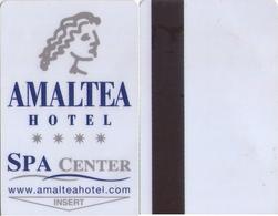 SPAIN. HOTEL KEY CARD. AMALTEA HOTEL. (LORCA, MURCIA) 007. - Cartes D'hotel