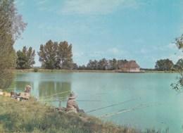Carte 1970 AUBIGNY SUR NERE / LE PARC DES SPORTS , LE BAR ET LE GRAND LAC (pêche , Pêcheurs) - Aubigny Sur Nere