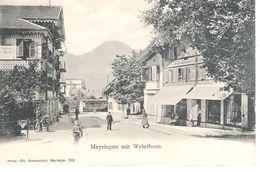 CANTON DE BERNE :MEYRINGEN MIT WYLERHORN . - BE Berne