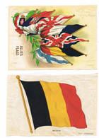Vlaggen Op Stof Attention Drapeau Belge Dechire - 1914-18