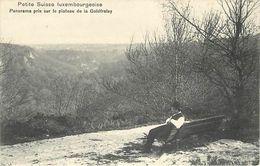 Pays Div-ref L281- Luxembourg - Luxemburg - Petite Suisse Luxembourgeoise - Plateau De La Goldfralay - - Unclassified