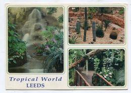 ENGLAND - AK 314380 Leeds - Tropical World - Leeds