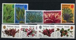 RC 6933 FALKLAND  - PLANTES FRUITS ALGUES 2 SERIES COMPLETES NEUF ** TB - Falkland Islands