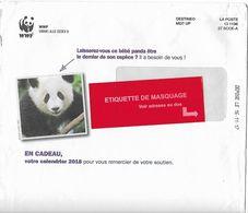 Destineo MD7 CI 1196 Sur Env Illustrée WWF Panda Ours Bear Tragen MTI GF Au Dos - Ours