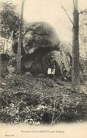 - Themes Div.-ref-A273- Dolmen Et Menhir - Megalithe  A Identifier - Pierre Qui Vire Pres Saint Didier - Megalithes - - Dolmen & Menhirs