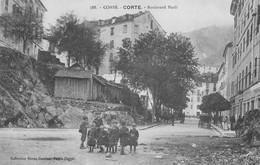 Corse - Corte Boulevard Paoli - Otros Municipios